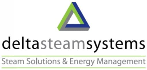 delta steam systems logo